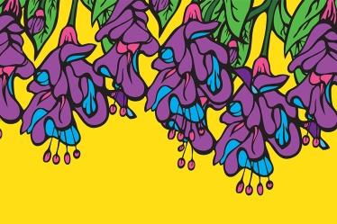 Digital illustrations of fuchsia flowers.